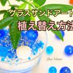 【動画あり】グラスサンドアートグリーン(植物)の植え替え方法