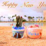 【Happy NewYear!】ハワイへ行ってました!